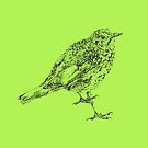 songthrush by andley