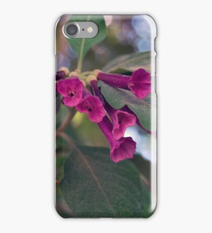 flowers through lens iPhone Case/Skin