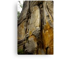 Face of Stone - Nature Photography Canvas Print