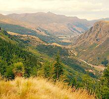 New Zealand landscape 10 by sabrina card