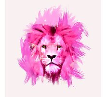 Pink Lion Photographic Print
