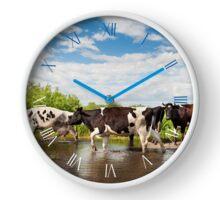 Cows herd walk across puddle Clock
