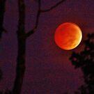 Blood Moon  by ANNABEL   S. ALENTON