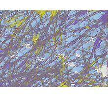 Evan's Marble Painting Photographic Print