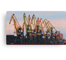 Dayglow Cranes Canvas Print