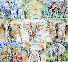 ELEPHANT: NINE POINTS OF VIEW by lautir