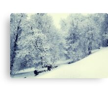 Snow World Canvas Print