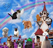 .¸¸.•´¯` RAINBOW BRIDGE OF FOREVER REMEMBERED´ .¸¸.•´¯`  by ✿✿ Bonita ✿✿ ђєℓℓσ