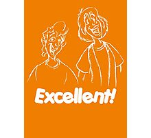 Bill and Ted - Group 04 - Excellent - White Line Art Photographic Print