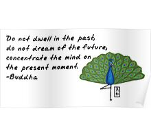 Peacock Zenimal with Buddha Quote Poster