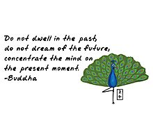 Peacock Zenimal with Buddha Quote Photographic Print