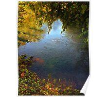 Sheltered Pond Poster