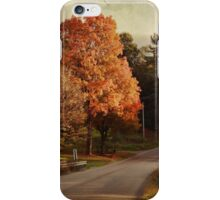 Brilliant Fall Beauty iPhone Case/Skin