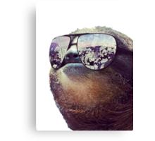 Big Money Sloth Canvas Print