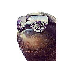 Big Money Sloth Photographic Print