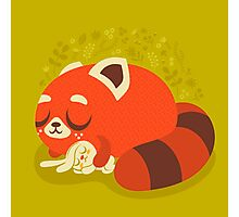 Sleeping Red Panda and Bunny Photographic Print