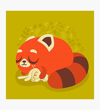 Sleeping Red Panda and Bunny Photographic Print