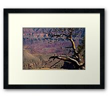 Reaching Framed Print