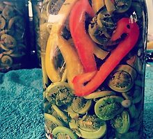 Pickled fiddles by lizzh