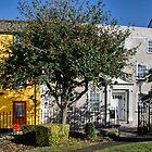 Monmouth Street - Lyme Regis by Susie Peek