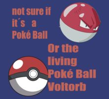 pokemon not sure voltorb or pokeball? by bryan1414