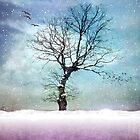 WINTER TREE by VIA INA