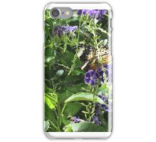 DC Butterfly1 iPhone Case/Skin