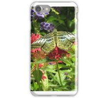 DC Butterfly2 iPhone Case/Skin