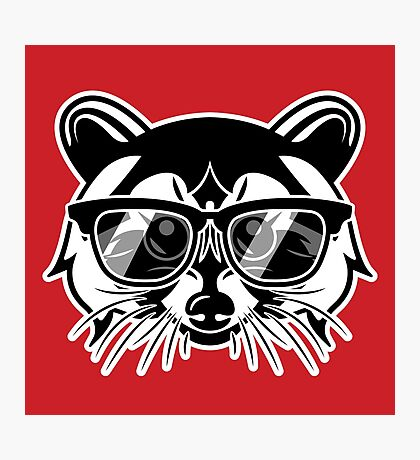 Cool Raccoon Photographic Print
