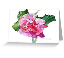 A Summer's Begonia Greeting Card