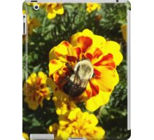 Flower and Insect Close-Up, Liberty State Park, New Jersey  iPad Case/Skin