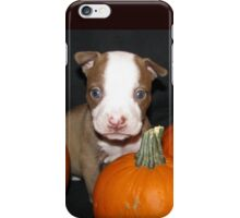 HAPPY HALLOWEEN !! iPhone Case/Skin