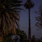 Driveway by Night by Candice84