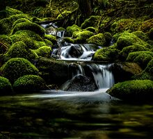Just Right by Charles & Patricia   Harkins ~ Picture Oregon