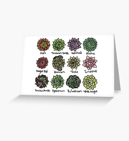 Succulents Plants Greeting Card