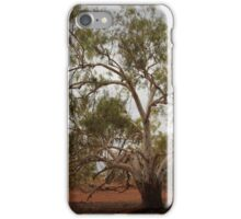 Ghost of the river... iPhone Case/Skin