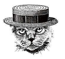 The Most Interesting Cat In The Hat Photographic Print