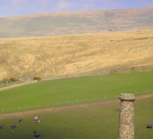 Dartmoor Mine Sticker
