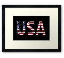 USA - American Flag - Metallic Text Framed Print