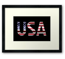 USA - American Flag - Metallic Text Framed Print