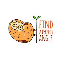 Owl wisdom. Find a perfect angle. by shizayats