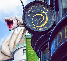diagon alley dragon. by Diana Kelly