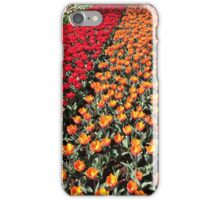 Tulips in Line iPhone Case/Skin