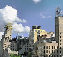 Mill City History, Mill City Museum by shutterbug2010