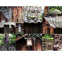 Rustic Garden Photographic Print