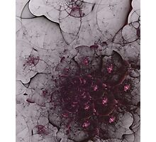 Mysterious and unusual texture with gentle mood-Gothic Photographic Print