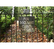 """""""For Dog's Sake Close the Gate"""" Photographic Print"""