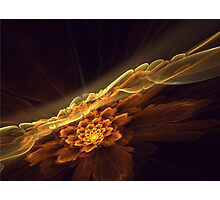Interesting  abstract background in brown and golden tones  Photographic Print