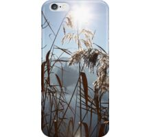 Misty Reeds iPhone Case/Skin