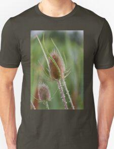 flower in summer T-Shirt